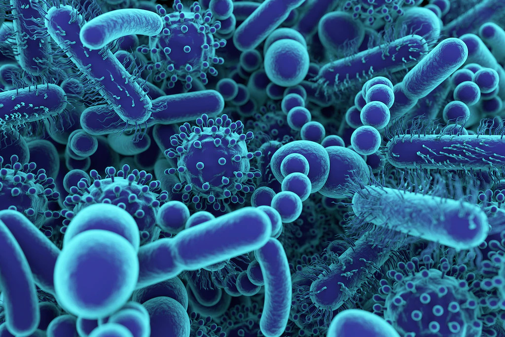 img-Investment into the Microbiome