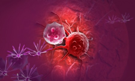 img-Improving Response To Checkpoint Blockade Therapies