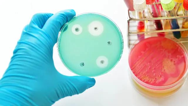 img-Combating Antibiotic Resistance Track